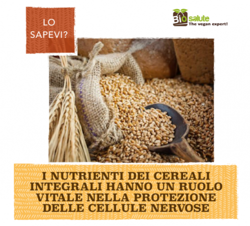 Cereali integrali e cellule nervose